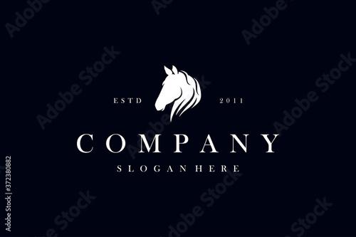 Fotografía Horse logo design vector