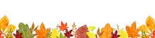 秋の葉っぱ 水彩イラ...