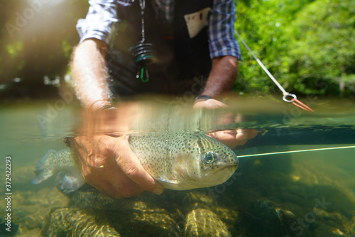 Photo fly fisherman in summer catching a rainbow trout fishing in a mountain river