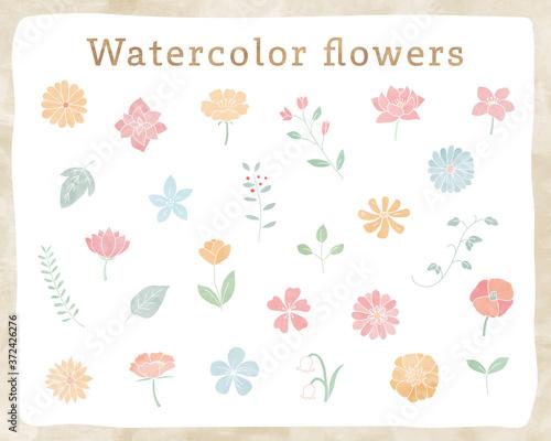 手書きの花や葉の水彩イラストのセット 植物 おしゃれ かわいい 素材 自然 Stock Vector Adobe Stock