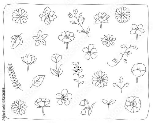 手書きの花や葉のイラストのセット 植物 おしゃれ かわいい 素材 自然 Adobe Stock でこのストックイラストを購入して 類似のイラストをさらに検索 Adobe Stock