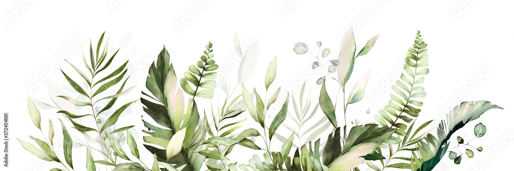 Fototapeta tropical watercolor herbal branch with leaves