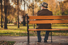 Rear Back Behind View Photo Of Old White Haired Grandpa Husband Street Walk Lonely Sit Bench With Stick Sad Miss Wife Widower Wear Glasses Jacket Cap Autumn City Empty Deserted Park Outside