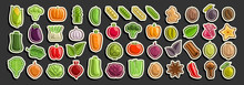 Vector Set Of Vegetables, Group Of Cut Out Cartoon Indian Spices, Various Minimal Design Vegetable Signs For Healthy Nutrients, Lot Collection Of Agriculture Simple Icons Isolated On Black Background.