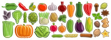 Vector Set Of Vegetables, Group Of Cut Out Cartoon Indian Spices, Various Minimal Design Vegetable Tags For Healthy Nutrients, Lot Collection Of Agriculture Simple Icons Isolated On White Background.