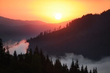 Fototapeta Góry Dawn view in the mountains. Fog among the mountains, a green coniferous forest on the slopes and the sun rising from behind the mountains.