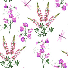 Seamless Vector Illustration With Sweet Pea, Lupine Flowers And Dragonflies On A White Background .