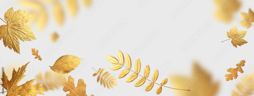 Fototapeta Golden flying autumn leaves of different shapes on light gray background. Autumn concept, fall background. Minimal floral design, autumn leaf frame. Golden twig. Autumn creative composition