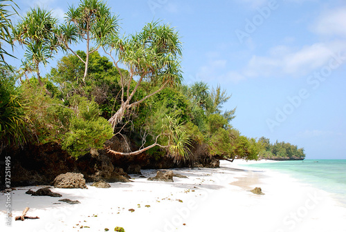 Stampa su Tela Pemba island