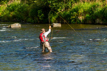 Man Fly Fishing For Sockeye Salmon On The Russian River In Alaska