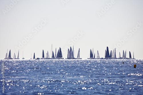 Fototapeta Les Voiles de Saint-Tropez