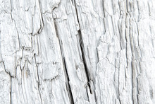 Texture Of A Driftwood With De...