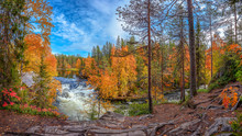 Powerful Wild River Flowing Through Magnificent Autumn Forest With Colorful Trees Against Cloudy Blue Sky