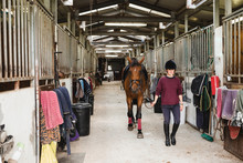 Young Female Equestrian In Rid...
