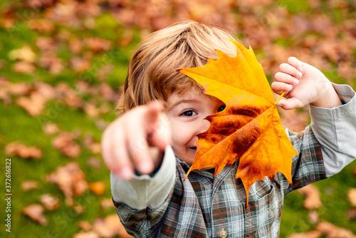Autumnal mood. Little child boy in autumn orange leaves, outdoor. Canvas Print