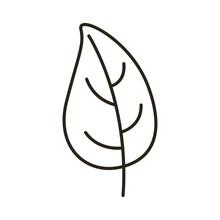 Autumn Leaf Line Style Icon