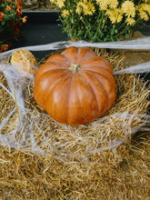 Pumpkin And Autumn Flowers With Cobweb On Hay Bale, Stylish Rustic Decor Of City Street. Happy Thanksgiving. Festive Halloween Street Decor