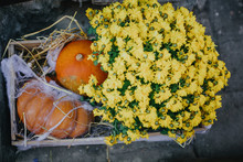 Pumpkins And Autumn Flowers With Cobweb On Hay Bale, Stylish Rustic Decor Of City Street. Happy Thanksgiving. Festive Halloween Street Decor