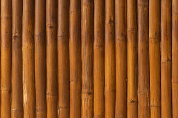 Bamboo wood texture close up