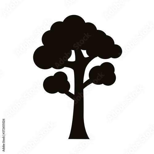 Fototapeta branched tree silhouette style icon