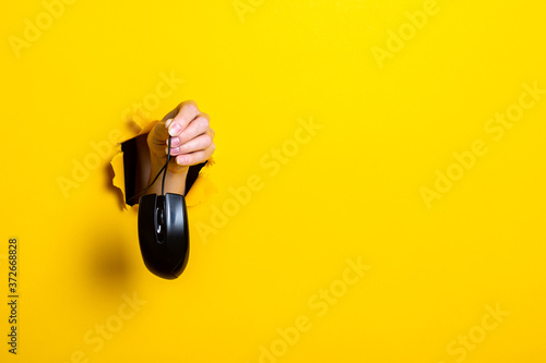 Fotografering Female hand holding a black computer mouse on a bright yellow background