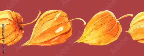Fotografía physalis yellow fruit berry pattern sunny pink plant floristic floral watercolor