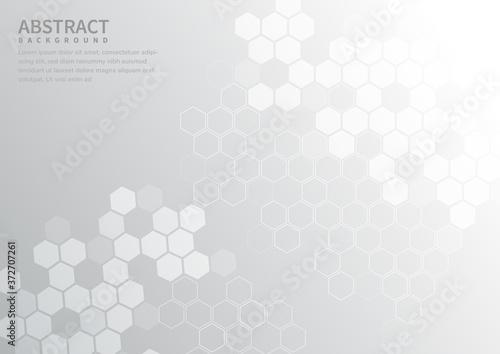 Fototapeta Abstract geometric hexagon pattern on white and gray background.