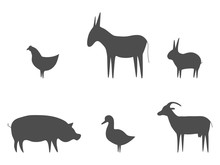 Farm Animals Black Outline Set Vector Illustration. Pig, Duck, Goat, Chicken, Rabbit And Donkey Isolated On White. Domestic Animals Collection. Animal Silhouettes Group.