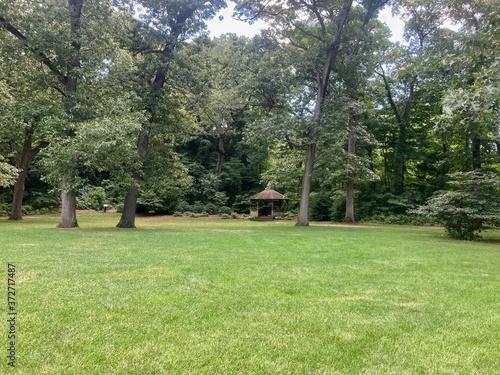 Photo gazebo in the park