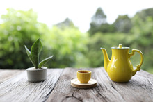 Yellow Cup And Teapot With Sn...