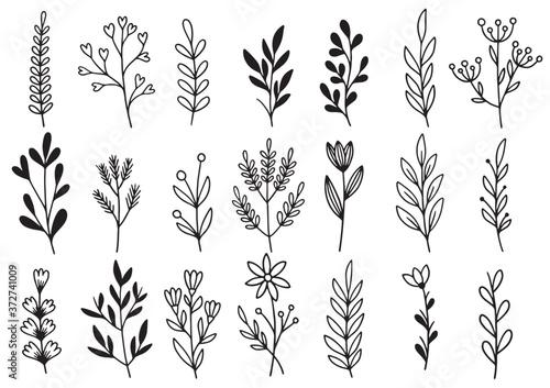 Fotografia 0192 hand drawn flowers doodle