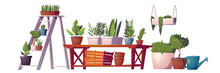 Greenhouse Plants, Orangery Or Floristic Store Interior Stuff, Garden Rack With Potted Flowers, Wooden Table, Boxes And Hanging Shelf, Watering Can And Pot With Green Tree. Cartoon Vector Illustration