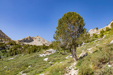 Morning View Of The Beautiful Landscape Around The Ruby Crest Trail