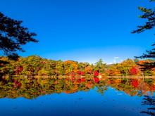 秋の再度公園(神戸・...