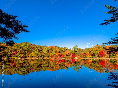 Photo 秋の再度公園(神戸・六甲山系)