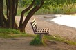 Wooden benches under trees in a park by the lake in the evening sun.