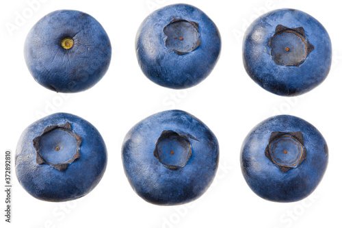 Fotografering blueberries isolated on white background