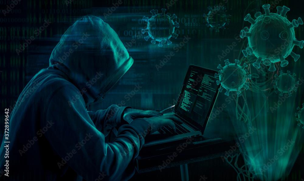 Fototapeta hooded hacker covid19 coronavirus phishing attack scam