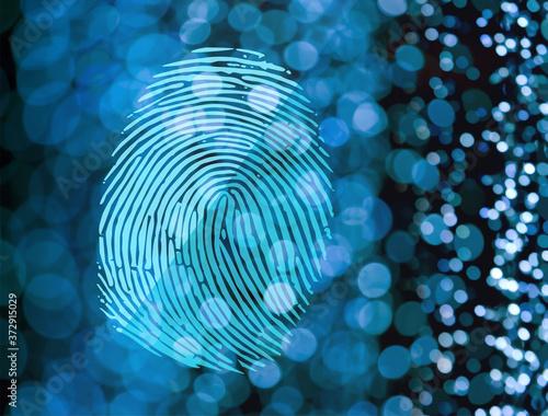 Fototapeta Fingerprint obraz