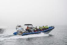 Tourists On Speedboat During S...