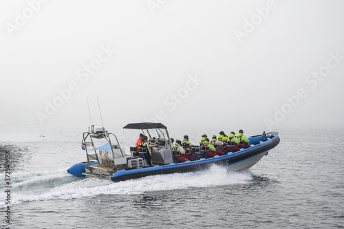 Photo Tourists on speedboat during starting whale watching tour in foggy weather condi