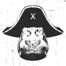 Portrait Of Hippo With A Pirate Hat. Vector.