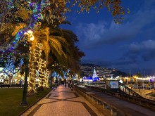Night View Of The City Of Funchal In Christmas, Madeira Island