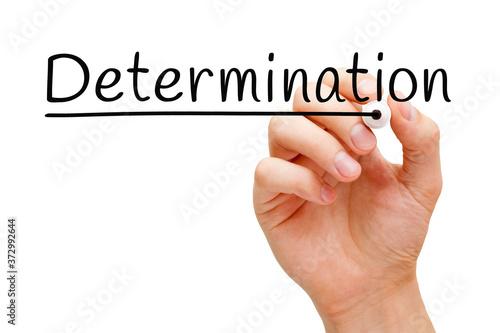 Word Determination Handwritten With Black Marker Fototapete