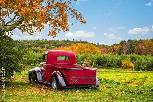 Fotografía Old antique red farm truck in apple orchard against autumn landscape background