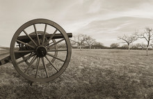 Cannon At The Peach Orchard