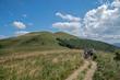 Szlak turystyczny w Bieszczadach