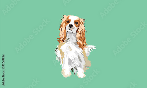 Vector Dog Wallpaper Mural