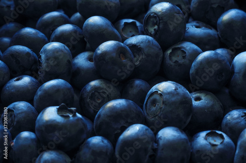 Photo Blueberries abound as texture and background