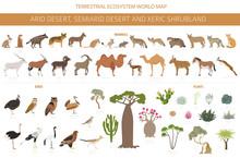 Desert Biome, Xeric Shrubland Natural Region Infographic. Terrestrial Ecosystem World Map. Animals, Birds And Vegetations Design Set